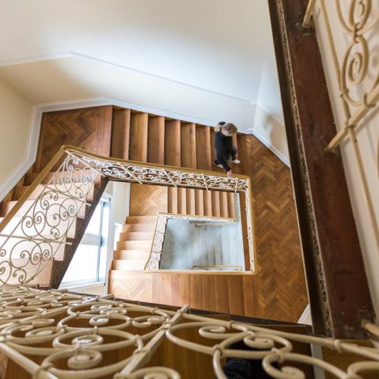 Treppenhaus der sanierten Villa Viktoria, Referenzobjekt von Wohnwert Immobilien